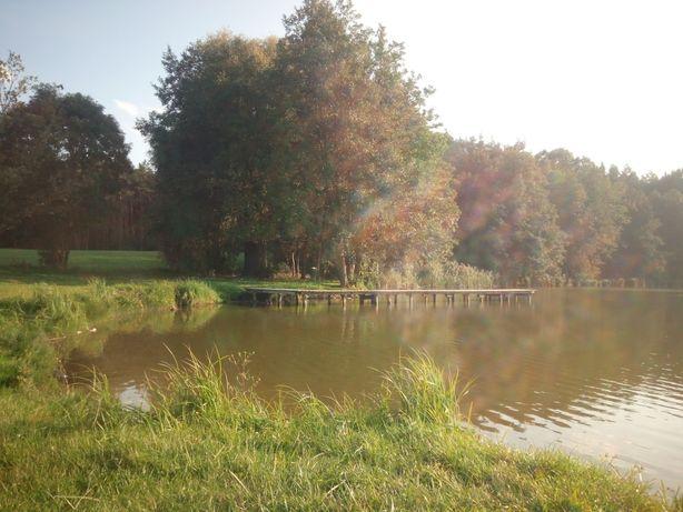 Wczasy na wsi nad jeziorem