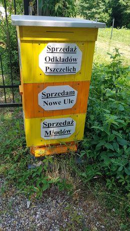 Odkłady pszczele 2021 Pszczoły, Apis melifera, Ule, wysyłka 10zł