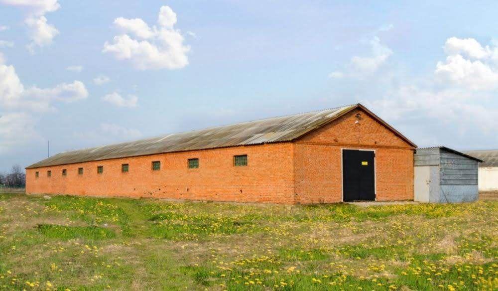 Животноводческая ферма под коровники, свинарники или курятники Киев - изображение 1