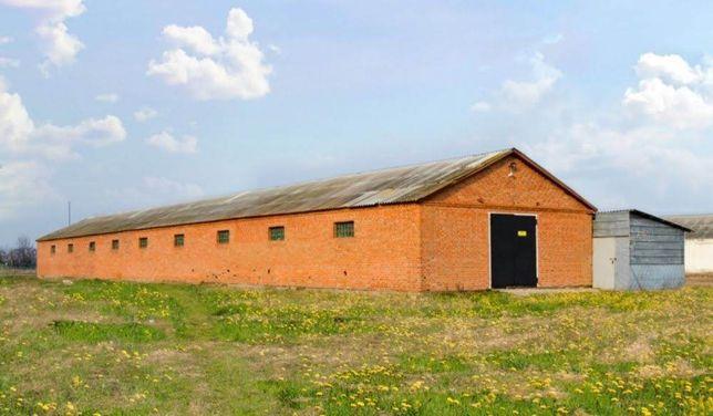 Животноводческая ферма под коровники, свинарники или курятники