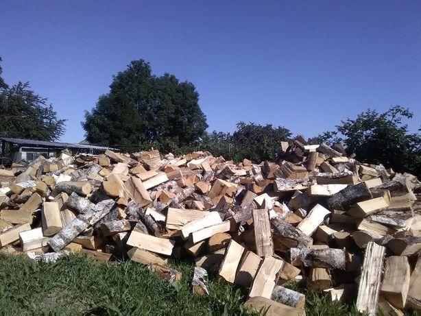Drewno drzewo opałowe rąbane (okolice Parczewa,Radzynia Podlaskiego)