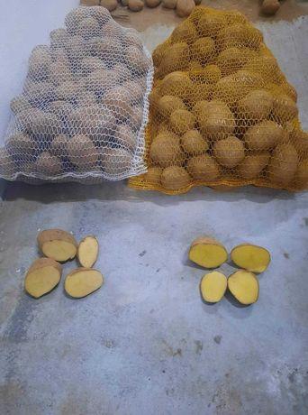 Sprzedaż ziemniaków z własnej uprawy