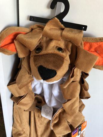 Halloween karnawał przebranie dla dziecka LEW 2-3 lata i 12-24 mc