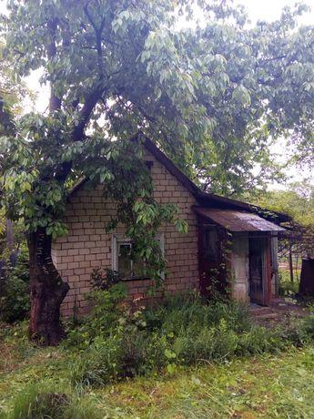 Дача, район Цецино, біля стрільбища