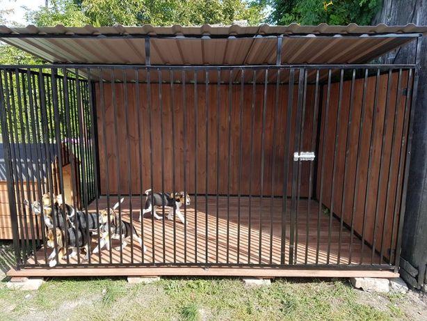 Kojec Klatka Zagroda Buda dla psa 3mx2m!