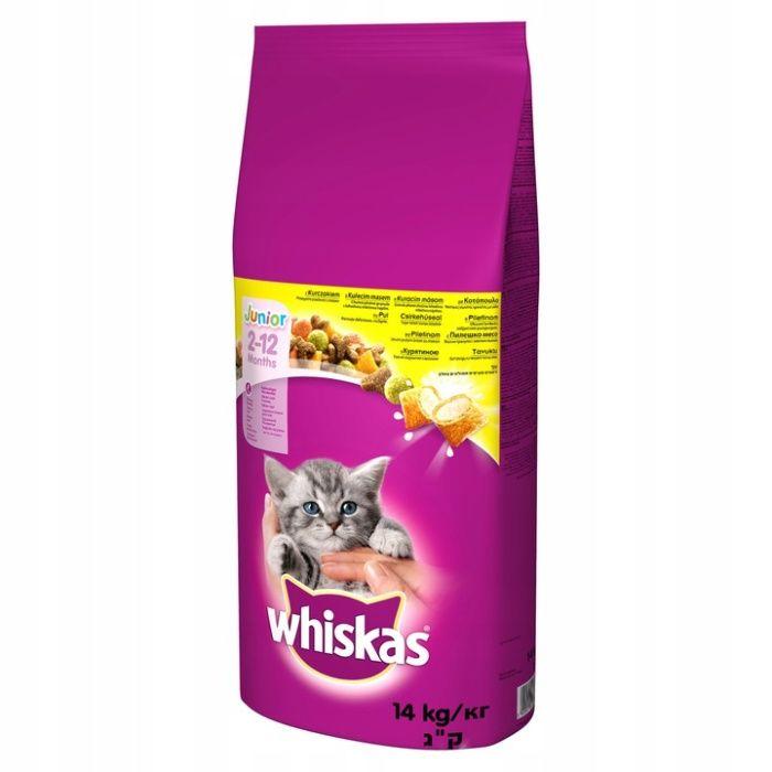 karma dla kotow whiskas junior z kurczakiem Zielona Góra - image 1
