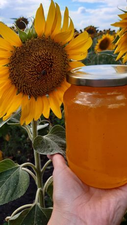 Продам мед, пыльцу