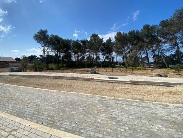 Lote de Terreno para construção de Moradia T4+1 em Birre