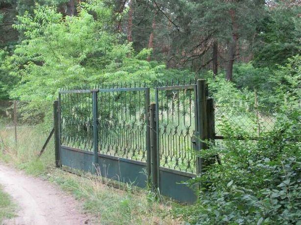 Urle - Piękna działka budowlana w lesie 1350 m kw