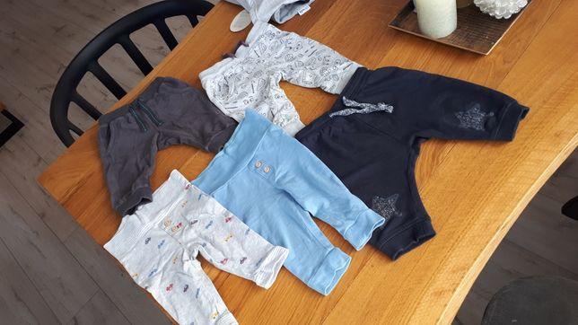 Spodnie dresowe, cienka bawełna cool club roz. 62 68