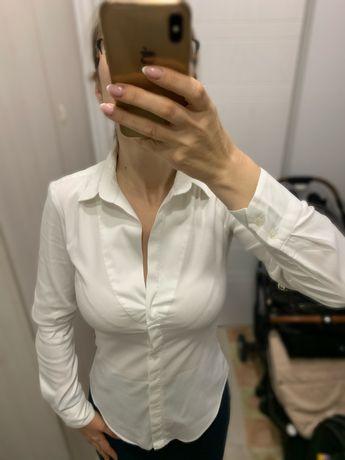 Рубашка Zara basic xs