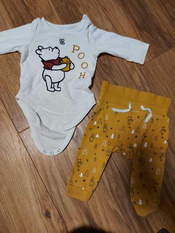 Chlopiec 62 body spodnie legginsy HM coccodrillo disney baby