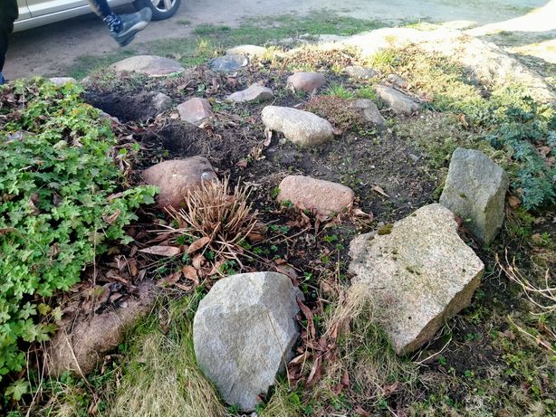 Kamienie na skalniak