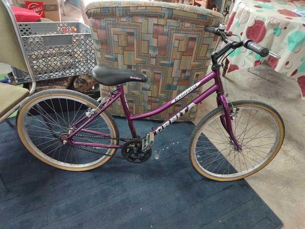 Bicicleta órbita senhora