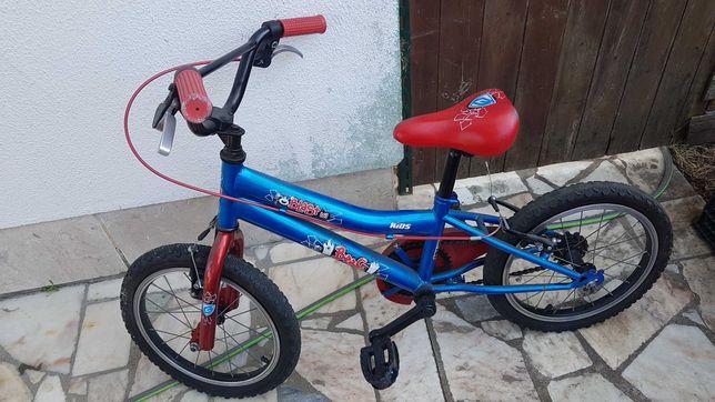 Bicicleta roda 21