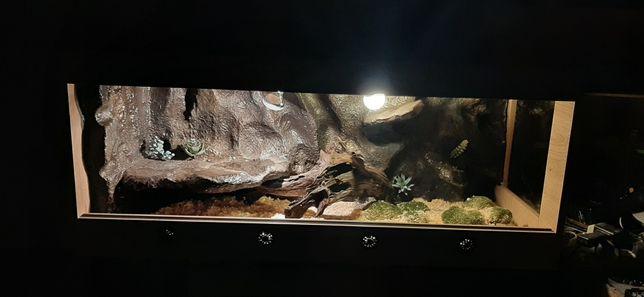 Terrarium Agama Gekon Waz SuperTerra Nowe 120x50x50