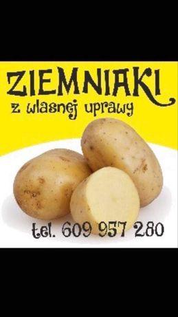 Ziemniaki jadalne workowane po 5-10-15 kg