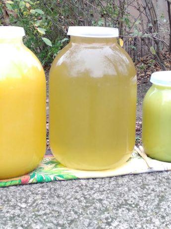 Продам Мёд натуральный, с доставкой. Разнатравие Софора, Гречаный