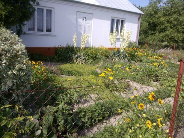 Gospodarstwo rolne - dom zabudowania gospodarskie ziemia 6,8 ha