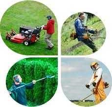 Podar, limpar terrenos. corta mato, racha lenha e corta