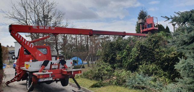 Wycinka drzew krzakow ,Rebakowanie gałęzi frezowanie pni, żywoplotyw,