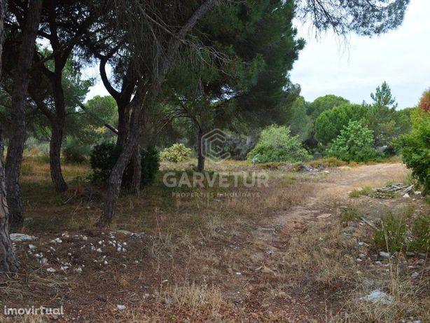 Terreno para construção urbana, Quarteira, Algarve