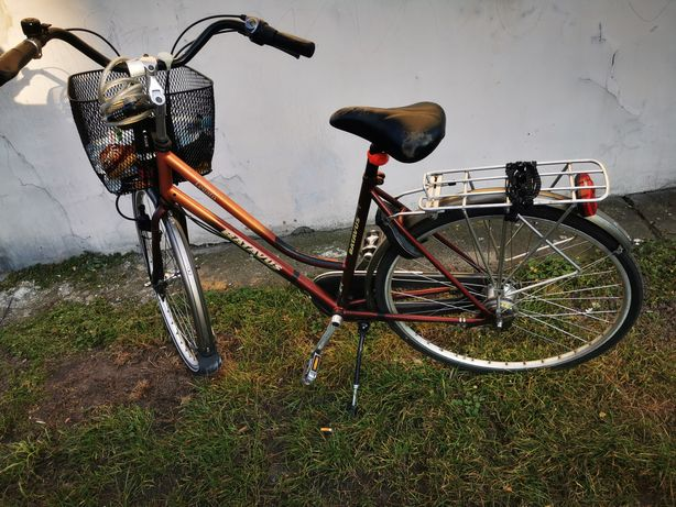 Rower batavus miejski