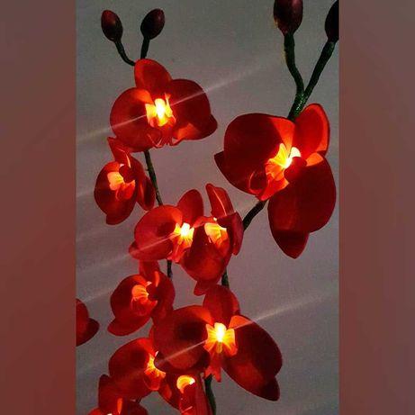 Orquídea decorativa