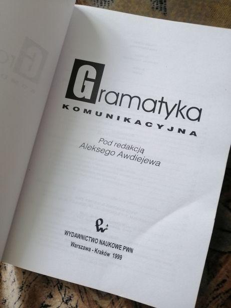 Польский язык граматика