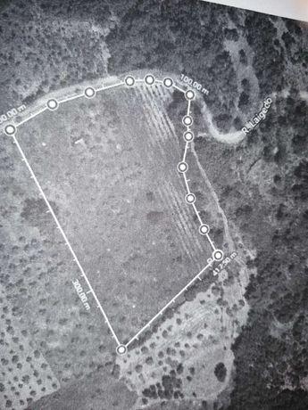 Terreno - 9950 m2