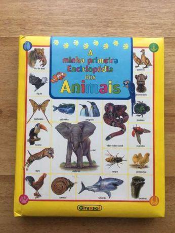 Livro - A Minha Primeira Enciclopédia Dos Animais