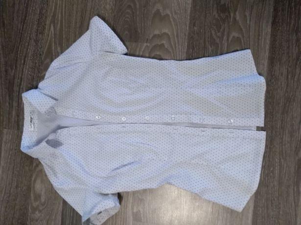 Блузка в мелкий горошек