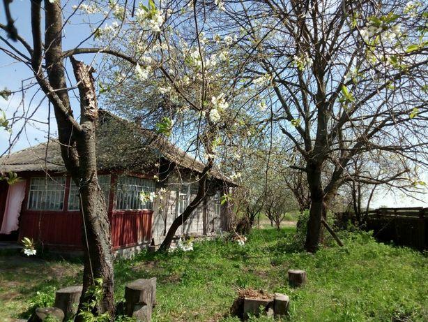 Дом 73м с участком 25 сот в фруктовом саду. Киевская обл, с.Любимовка