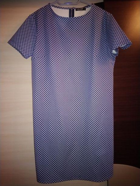 Sukienka we wzorek XL