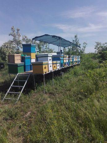 Прицеп пчеловодческий. Улики
