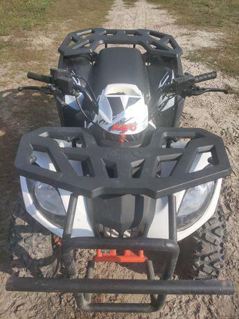 Продам квадроцикл 2021 года Kayo 200