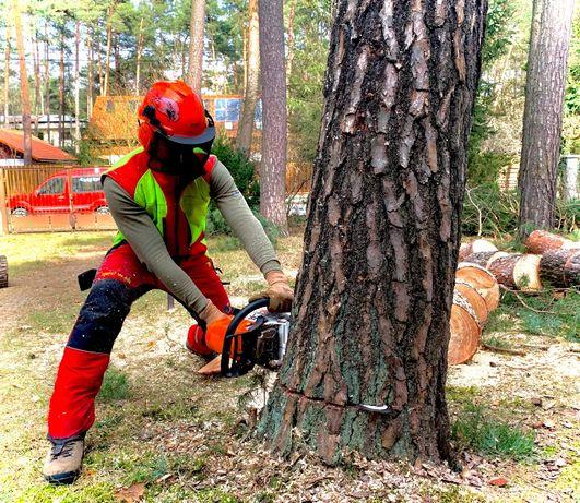 Wycinka/pielegnacja drzew, metoda alpinistyczna, zrębkowanie gałęzi