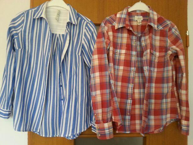 Koszule, bluzki 34, 36, 38