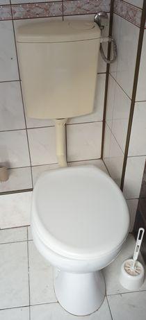 Toaleta z dolnopłukuem i deską