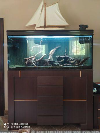 Akwarium atopowe
