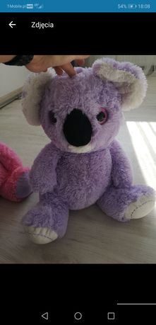 Pluszak duzy koala