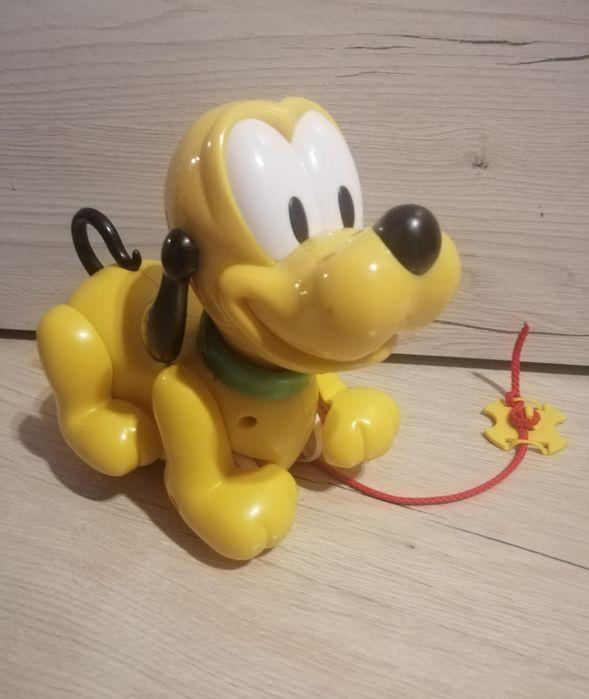 Pluto spacerowicz Ostrowiec Świętokrzyski - image 1