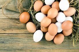 Sprzedam jaja perliczek kur niosek