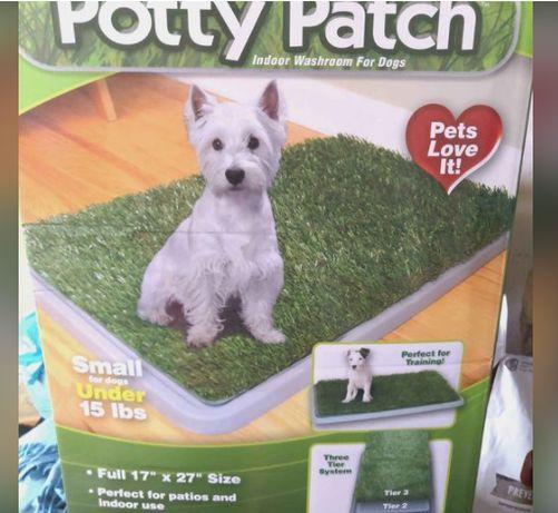 Kuweta dla małego psa