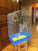 Клетка для птички (размер 27*45*60)