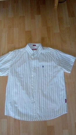Koszula męska Carry XL