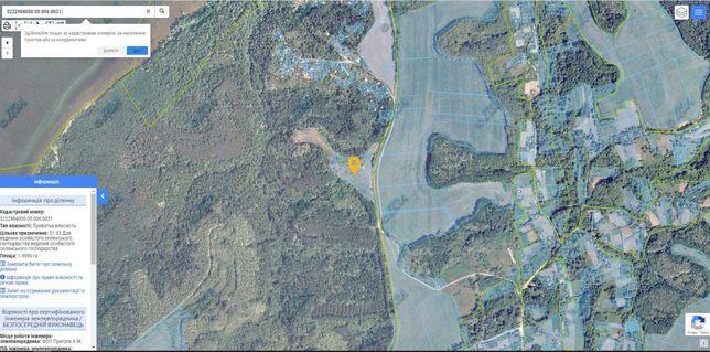 Земельный участок (Киевская область, с. Великий Букрин, Трахтемиров)