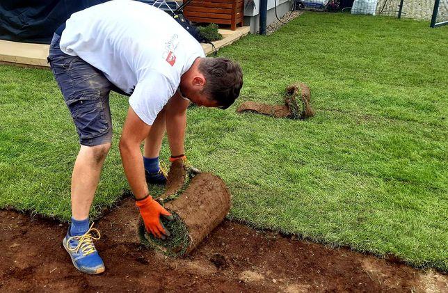 USŁUGI OGRODNICZE - zakładanie trawników, trawnik z siewu i z rolki