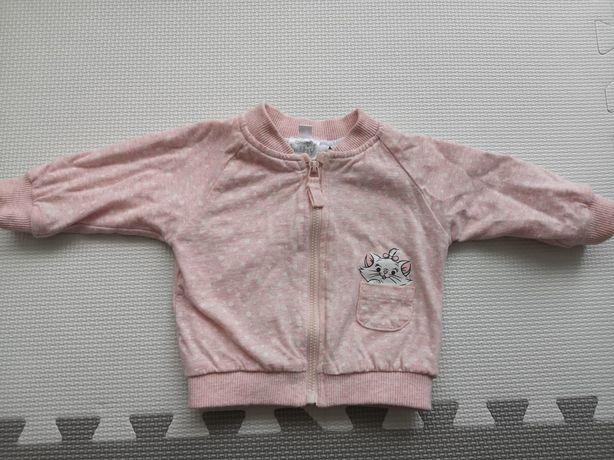 Bluza niemowlęce dla dziewczynki Cool Club 56