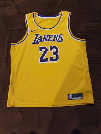 NIKE NBA los angeles  Lakers LEBRON JAMES ICON